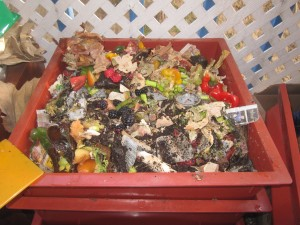 Agridude - Food Scraps in Bin