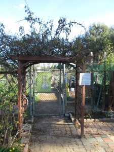 Agridude - Ocean Beach Community Garden Entrance