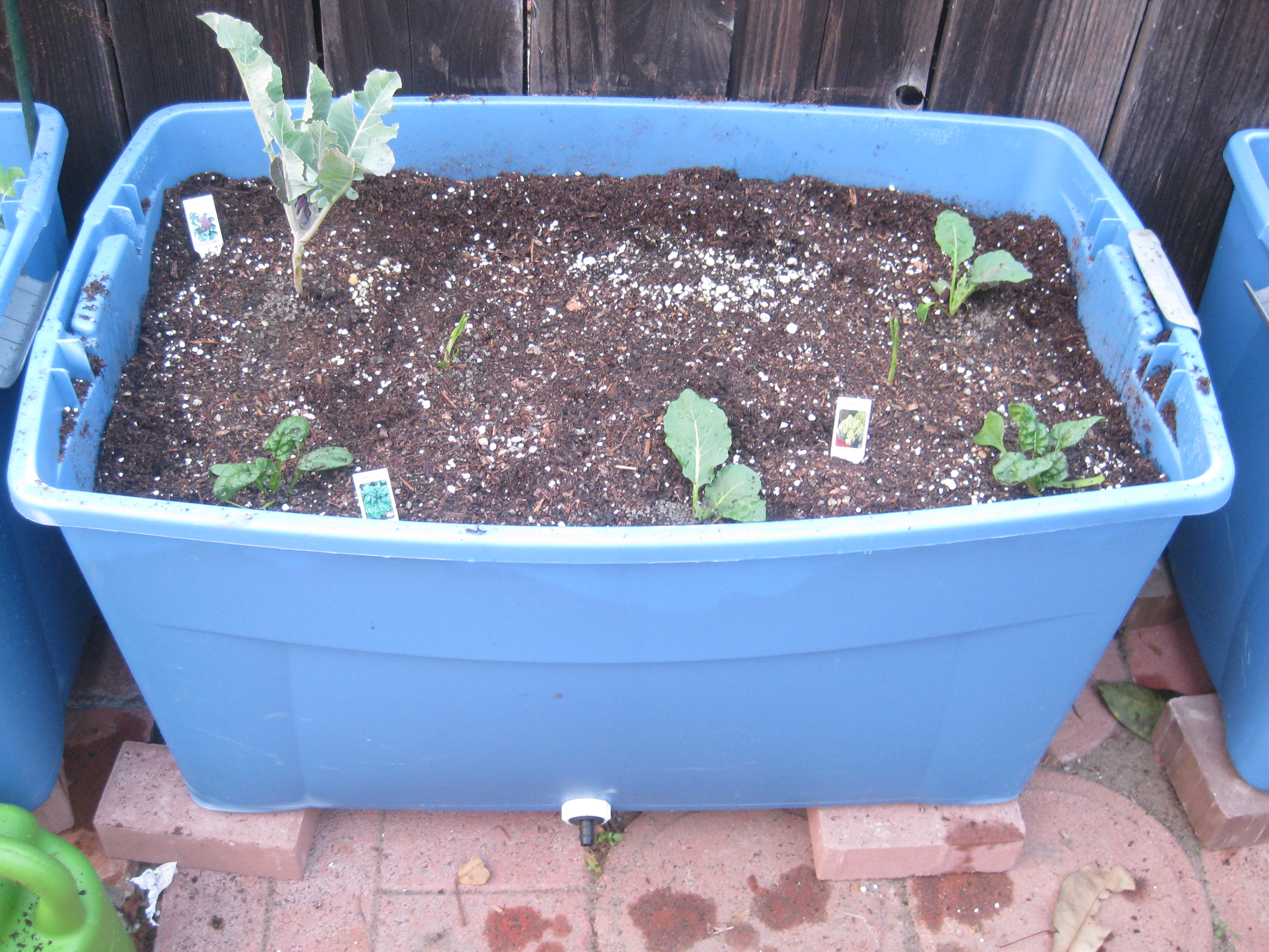 Raised Beds From Plastic Storage Containers Agridude